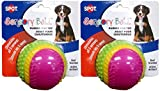 Spot Sensory Rubber Sented Ball Dog Toy Size:3.25'' Pack of 2