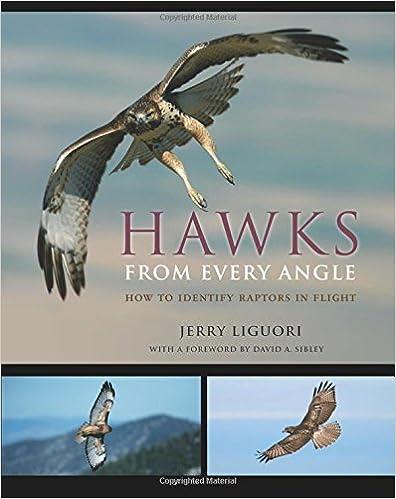 Flying birds of prey (First animals Book 19)