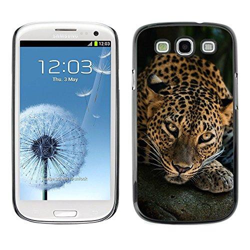 [Neutron-Star] Snap-on Series Coque de protection rigide Cas Case pour Samsung Galaxy S3 [Leopard Big Cat Feline nature animale]