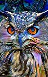 Notebook: art owl bird owls wildlife predator