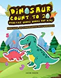Dinosaur Count To 20 Practice Books For