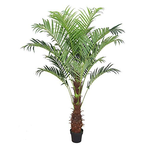 - AMERIQUE Gorgeous Tech, w Gorgeous & Unique 6 Feet Phoenix Palm Artificial Plant Tree with Nursery Plastic Pot, Real Touch Technology, with UV Protection, Super Quality, 6', Green