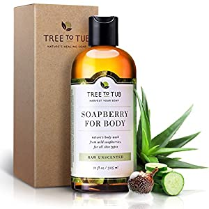 Real, Organic Body Wash For Allergic Skin, The Only pH 5.5 Balanced Fragrance Free Body Wash For Sensitive Skin Types – Natural Shower Gel For Men And Women With Fresh Eco-Friendly Wild Soapberries