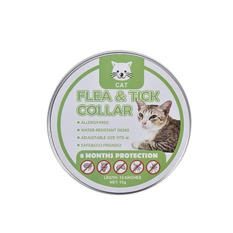 ZHDDSM Gato prevención pulga Collar Repelente de Mosquitos ...