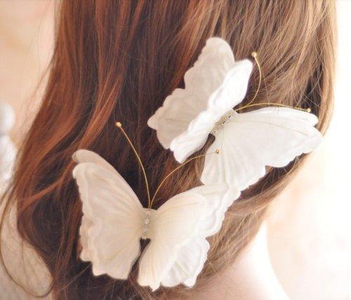 Butterfly Beauty Flower - 4