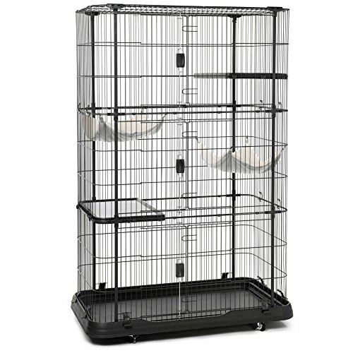 Kitten Enclosure Cat Playpen With Hammocks And Casters Deluxe Cat Lounging Home Large Cage Exercise Habitat For Indoor Outdoor Lightweight Huge Crates Locking Black Best Exercise And eBook By ()