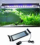amzdeal Fish Tank Light LED Aquarium Light With Extendable Bracket 11.8-19.6 Inch White and Blue
