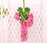 Coobl 3.6 Ft Realistic Romantic Classic Artificial Fake Wisteria Vine Ratta Silk Flowers for Garden Floral Decoration DIY Living Room Hanging Plant Vine Home Party Wedding Decor 12 Pcs (Pink)