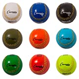 Champion Sports Weighted Training Baseball Set with Nylon Carrying Case