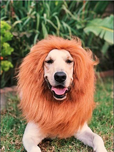 OMG Adorables - Lion Mane for Dog - Halloween Costume -