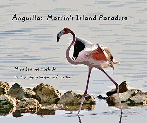 Anguilla: Martins Island Paradise