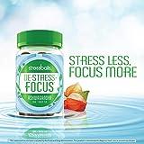 Stressballs, De-Stress + Focus, with Ashwagandha