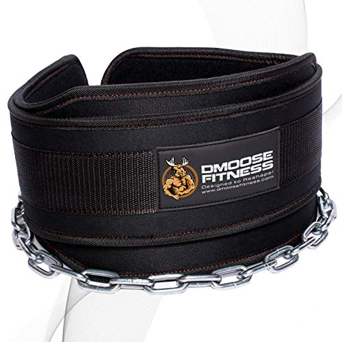 DMoose Fitness Dip Belt with Chain for Weightlifting