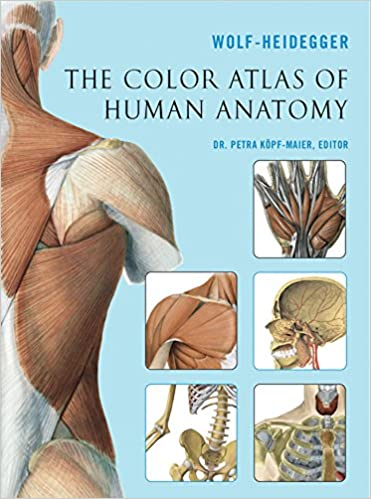 The Color Atlas Of Human Anatomy 51112th Edition
