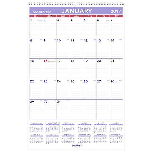 AT-A-GLANCE Wall Calendar 2017, Monthly, 20 x 30