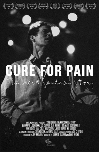 Cure for Pain: The Mark Sandman Story [DVD] [Import] B009RNK150