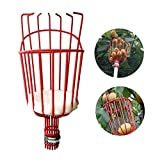 GEZICHTA Apple & Fruit Picker Basket, Fruit Tree Picking Deep Basket-Extra Lightweigh-Gardening Picking Tool for Oranges,Apples or Any Kinds of Fruits