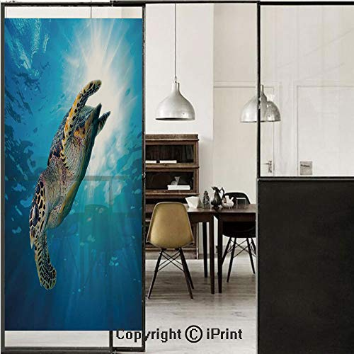 - Turtle 3D Decorative Film Privacy Window Film No Glue,Frosted Film Decorative,Hawksbill Sea Turtle Dive Deep Into The Blue Ocean Against Sun Rays,for Home&Office,17.7x59Inch Yellow Brown Aqua Blue