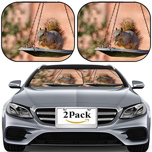 MSD Car Sun Shade for Windshield Universal Fit 2 Pack Sunshade, Block Sun Glare, UV and Heat, Protect Car Interior, Squirrel Eating Seeds from a Bird Feeder Photo 19258314