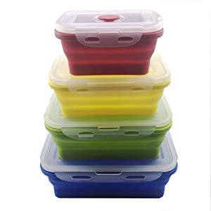 Swity Home Set of 4 Collapsible Silicone Food Containers, Plastic Lid Silicone Bowl, Storage Canister Set, Use For Food and Storage, Kitchen Food Saver Container
