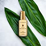 L'ANZA Keratin Hair Treatment Healing Oil - Hair
