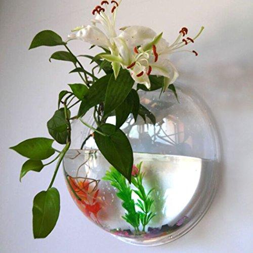 Amazon Outgeek Wall Fish Bubble Wall Hanging Bowl Clear