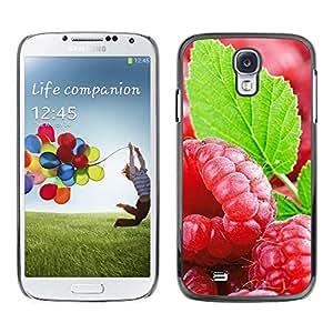 LECELL -- Funda protectora / Cubierta / Piel For Samsung Galaxy S4 I9500 -- Fruit Fresh Mint --