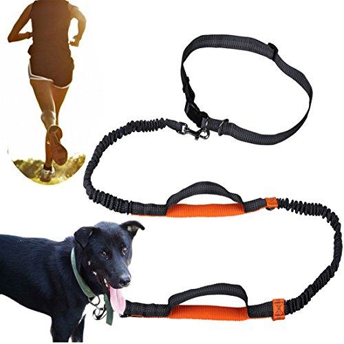 Baby Stroller Dog Leash - 2