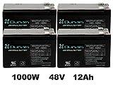 Battery Replacement Kit for 1000 Watt Cruzin Cooler