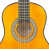 Classical Acoustic Guitar Beginner Classical Guitar