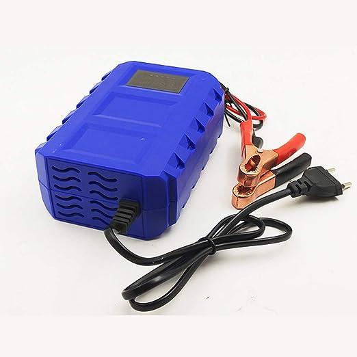 WSHZ Cargador de batería de Coche, 12 V, Cargador de batería ...