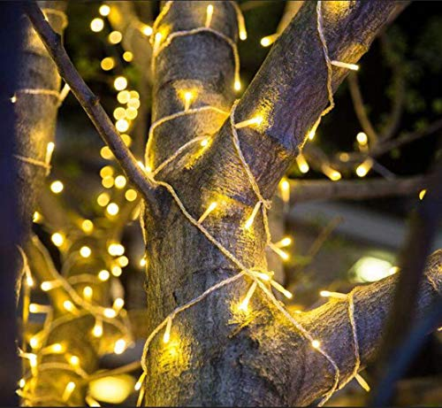 200 Led Christmas Tree Lights in US - 9