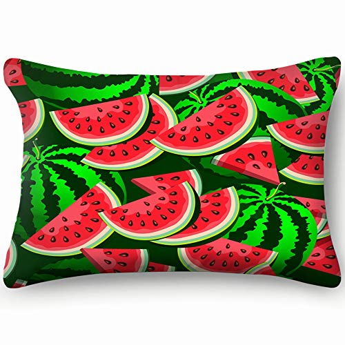 best bags Watermelon Botanical Pillowcases Decorative Pillow Covers Soft and Cozy, Standard Size 14