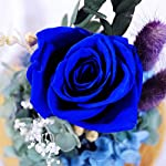 KING-DOO-Handmade-Preserved-Real-Rose-Upscale-Exquisite-Gift-Flowers-Eternal-Life-Never-Withered-Roses-Flowers-for-Valentines-Day-Birthday-Anniversary-Christmas-Royal-Blue