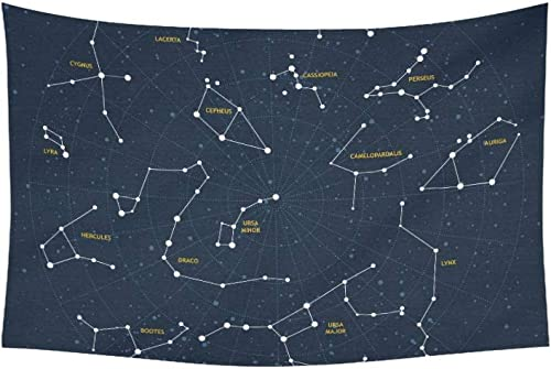 YSWPNA Tapestry Vector Sky Map Constellations Stars Andromeda L Tapestries Wall Hanging Flower Psychedelic Tapestry Wall Hanging Indian Dorm Decor for Living Room Bedroom 60 X 40 Inch