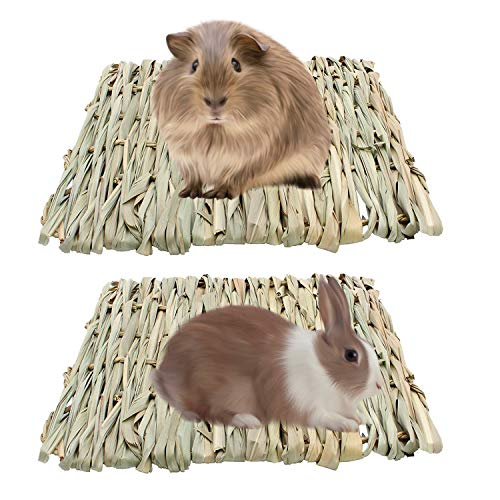 Royal Brands 2-Pack Pet Grass Hay Mat Woven Bed Mat Small Animal Chew Toy Bed Play Ball Guinea Pig Parrot Rabbit Bunny Hamster Ferret Chinchilla Hedgehog Bedding