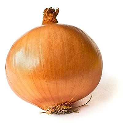 Onion Seeds - Utah Yellow Sweet Spanish - Heirloom - Liliana's Garden