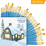 Acrylic Paint Brushes, Craft Paint Brushes, Artist