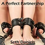 A Perfect Partnership: An Erotic BDSM Fantasy | Seth Daniels