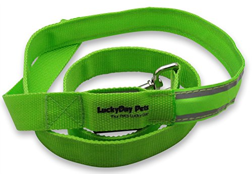 Lucky Day Pets - Pet LED Dog Leash - Waterproof Nylon Webbing with Reflective Strips, 4 Feet Long, Green