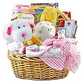 The Fabulous Family Baby Girl Gift Basket