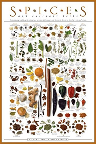 Amazon.com: Laminated Spice Poster Print Culinary Herbs 24x36 ...