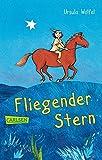 Fliegender Stern (CarlsenTaschenBücher)