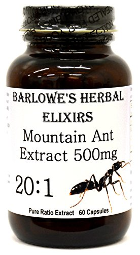 Mountain Ant Extract 20:1-60 500mg VegiCaps - Stearate Free, Bottled in Glass! FREE SHIPPING on orders over ()