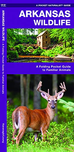 Arkansas Wildlife: A Folding Pocket Guide to Familiar Animals (Wildlife and Nature Identification) (Outdoor Little Ar Rock Stores In)
