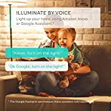 Eufy Lumos Smart Bulb - White, Soft White (2700K), 60W Equivalent, Works With Amazon Alexa & the Google Assistant, No Hub Required, Wi-Fi, Dimmable LED Bulb, 9W, A19, E26, 800 Lumens