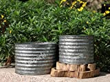 Decorative Galvanized-Metal Ribbed Planter Combo