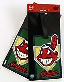 MLB Cleveland Indians Two Pack Soft Laser Bag Tag