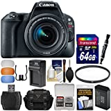 Canon EOS Rebel SL2 Wi-Fi Digital SLR Camera & EF-S 18-55mm is STM Lens (Black) + 64GB Card + Case + Battery & Charger + Flash Diffusers + Filter Kit