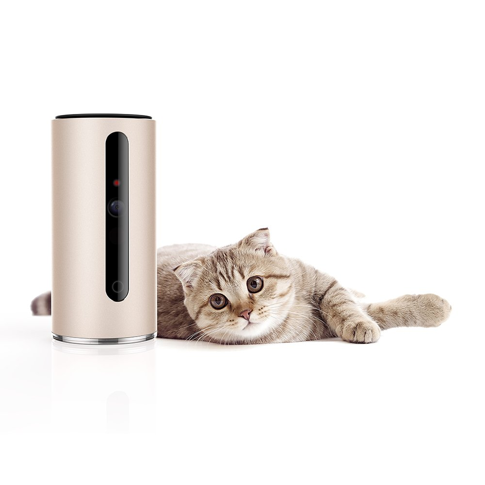 PETKIT Baby/Pet Camera Monitor 340° Rotatable 110° Visual 2-Way Audio 720p HD Video DOGs CATs Activity Monitor Laser Toy by PETKIT (Image #1)